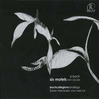 [JS Bach Six Motets BWV 225-230 by Bach Collegium San Diego]