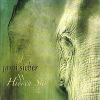 [Hidden Sky by Jami Sieber]