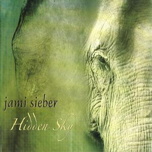 Hidden Sky by Jami Sieber