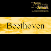 [Ladislav Jelinek plays Beethoven by Ladislav Jelinek]