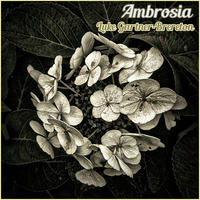[Ambrosia by Luke Gartner-Brereton]