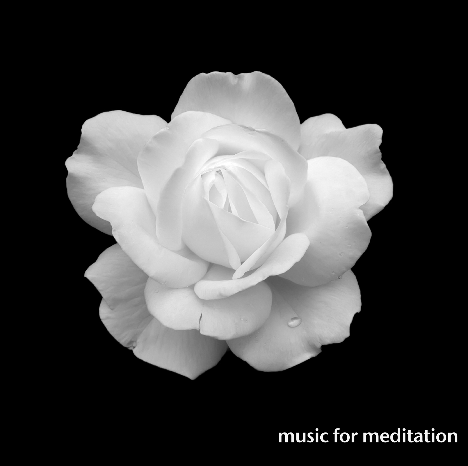 Compilation music for meditation the best music from magnatune songs