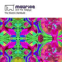 [The Electric Dark Bulb by Maurice and the Beejays]