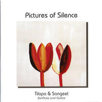 Pictures of Silence